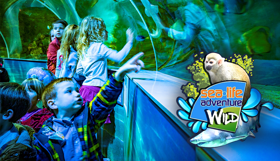 Win a family ticket to Sea-Life Adventure + Wild, Southend - Worth £50!